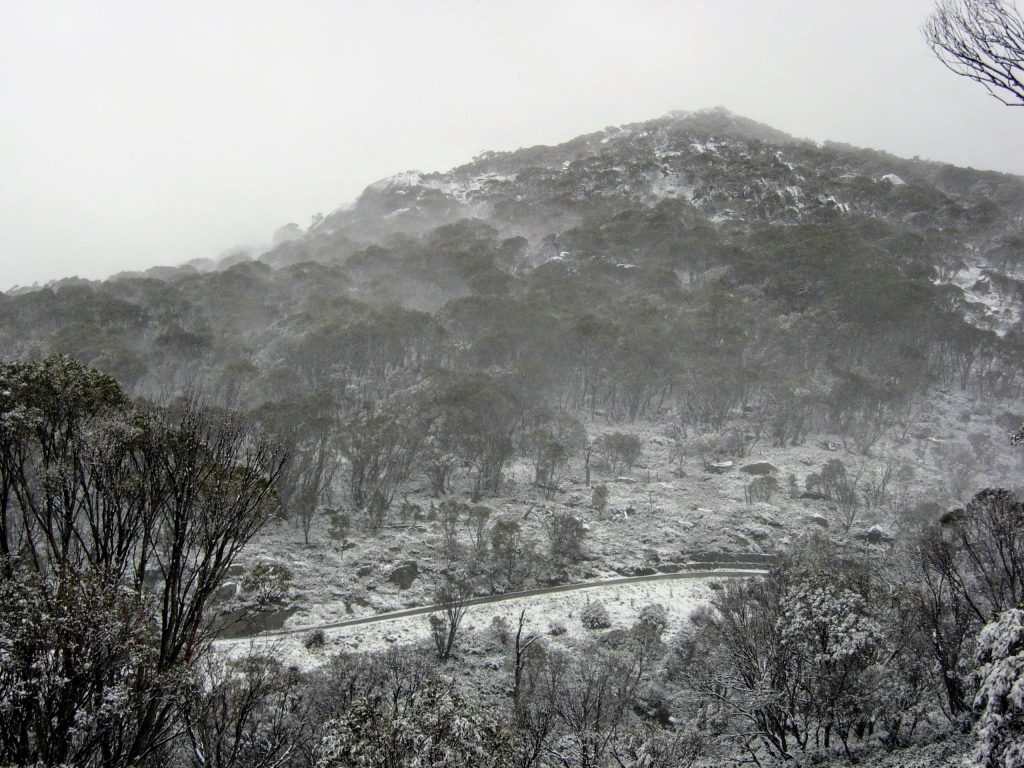 Perisher to Blue Cow, Kosciuszko National Park