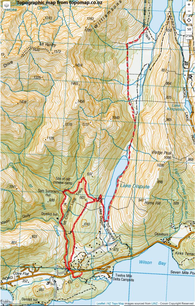Mt Crichton Loop & Lake Dispute, near Queenstown