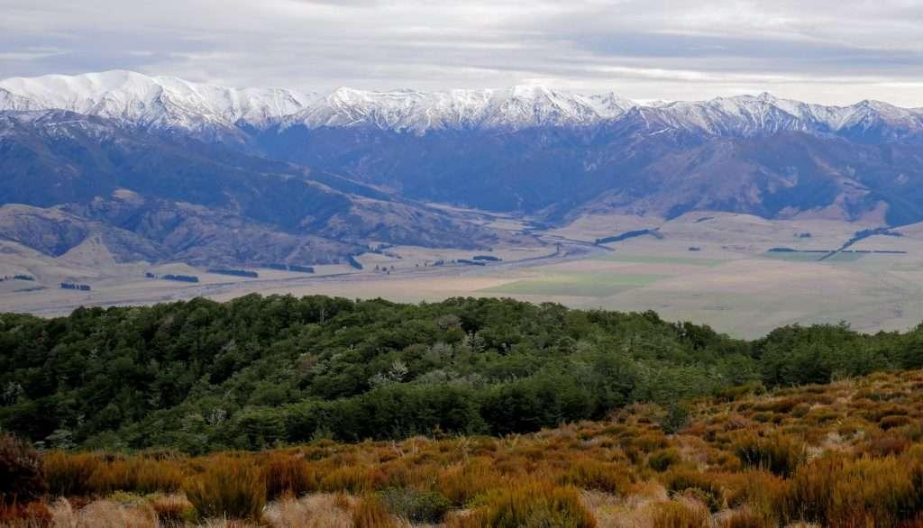 Mt Richardson Loop, Mount Thomas Conservation Area