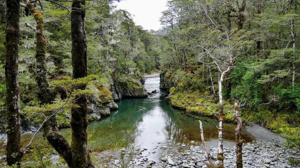 Nina Valley to Nina Hut, Lake Sumner Forest Park