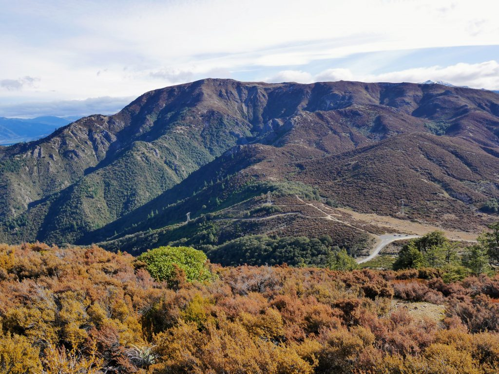 Mt Isobel from Jacks Pass, Hanmer Forest Park