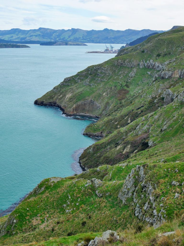 Godley Head Circuit, Christchurch NZ