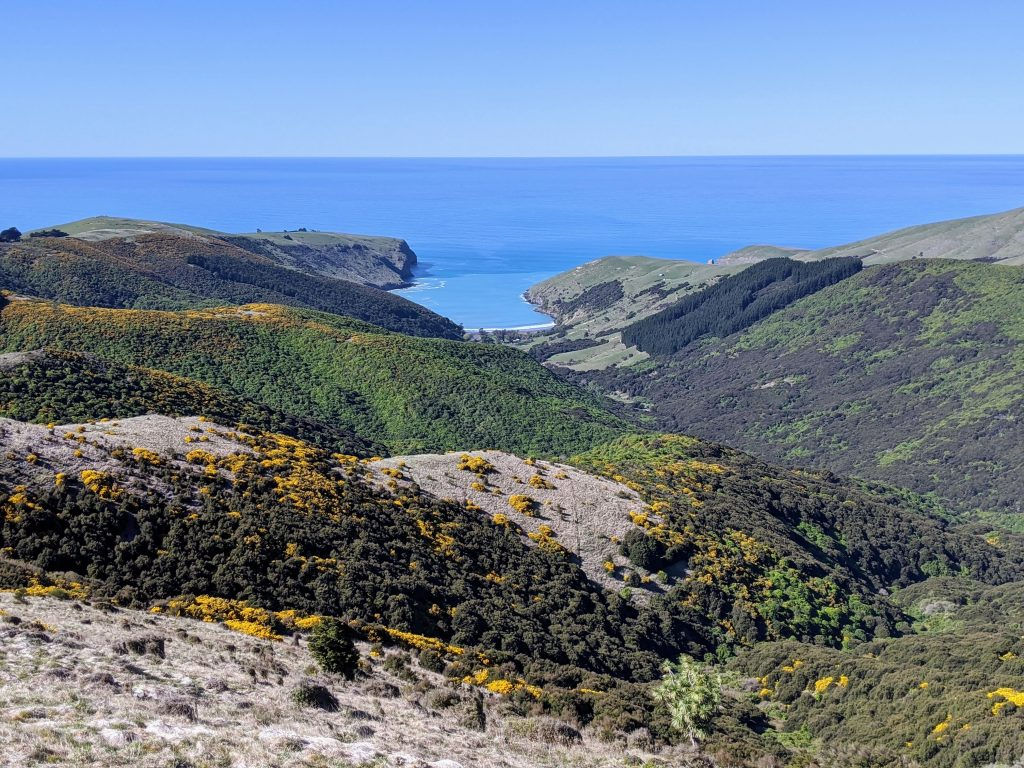 Hinewai Reserve & Stony Bay Peak, Banks Peninsula