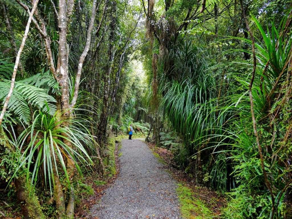 Okarito Trig Walk, Okarito, Westland