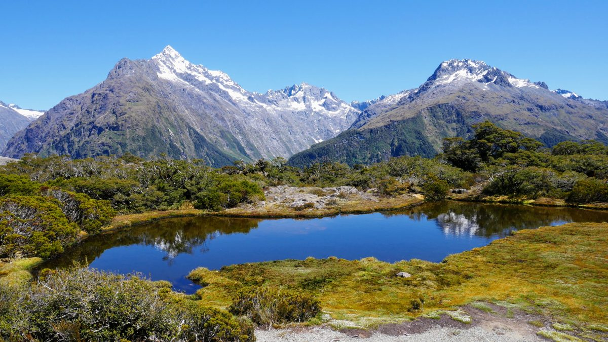 Key Summit Track & Lake Howden, Fiordland National Park NZ