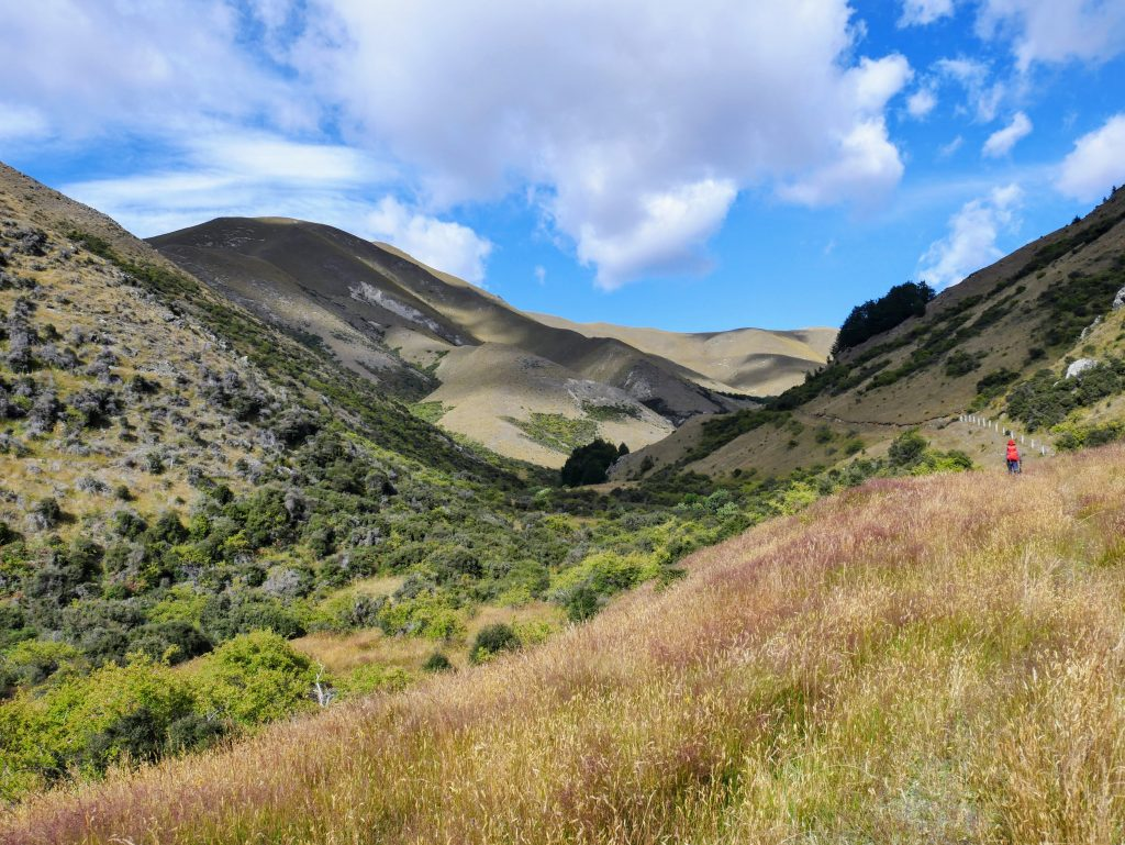 Dromedary Hill Track, Lindis Conservation Area