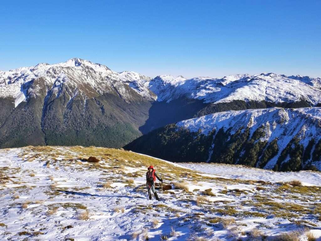 Travers Peak via Foleys Track, Lewis Pass