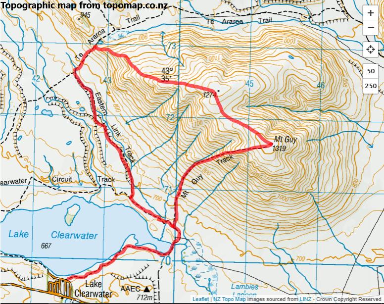 Mt Guy Circuit, Hakatere Conservation Park